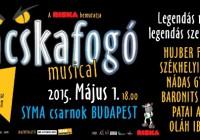 Macskafogó Musical